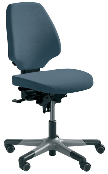 RH Activ 222 Office Chair